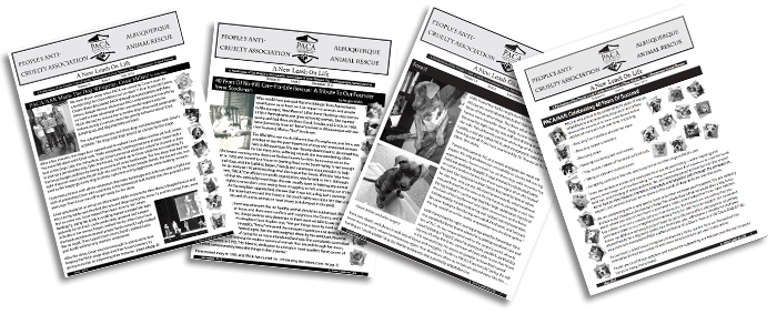 PACA Newsletters Banner